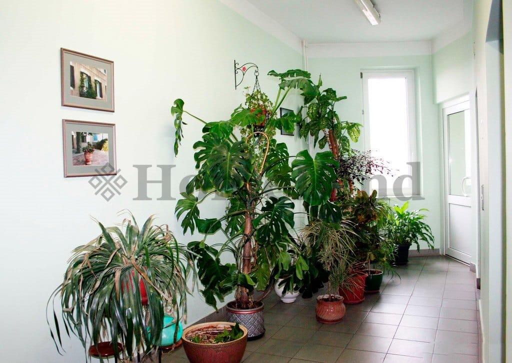 Аренда элитных квартир в Москве  снять элитную квартиру